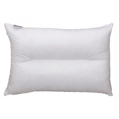 Μαξιλάρι Ανατομικό Ύπνου 50x70 - AnnaRiska - Σιλικόνης Aloe Vera | Μαξιλάρια Ύπνου | DressingHome